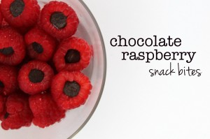Chocolate Raspberry Snack Bites